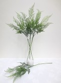 Asparagus Fern Spray