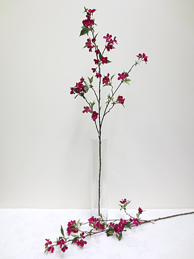 """45"""" Peach Blossom Stem"""