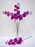 31″ Phalaenopsis Spray