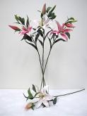 35″ Casablanca Lily