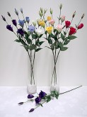 Lisianthus Spray