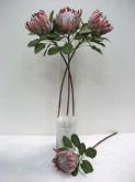 "29"" King Protea (RUST ROSE)"