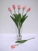 Single Sml. Tulip