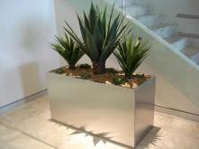 Stairway – Cactus Planter