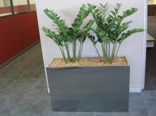 Hallway – Long Planter