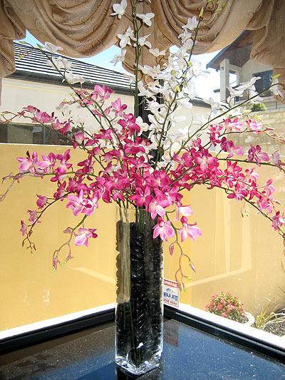 Kitchen – Orchid Arrangement