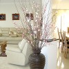 commercial_display_house_02