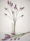 130cm Lilac Bush
