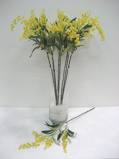 "31"" Wattle (Memosa) Spray"