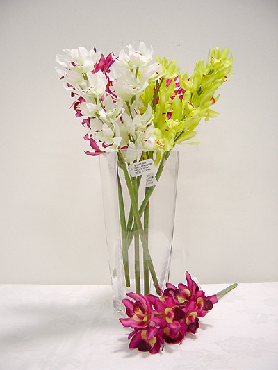 Single Cymbidium Orchid