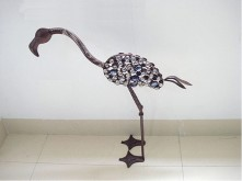 Jewelled Flamingo