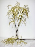 37″ Amaranthus Spray