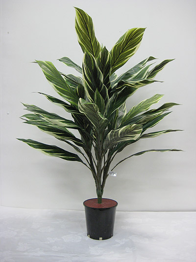 32″ Deluxe Cordyline Plant (Green/Yellow)