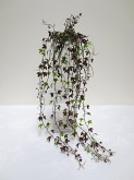 Plastic Mini Ivy Bush