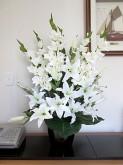 White Lilies & Gladioli