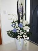 Mixed Flowers (Blue & Cream)