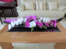 'Fresh-Look' Orchids in Palm Pod