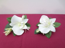 White Crescent Set – Buttonholes