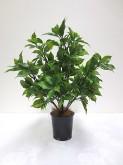 17″ Plastic Ficus Bush