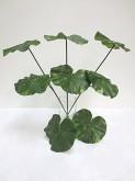 20″ Lotus Leaf