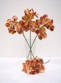 """19"""" Vanda Orchid Spray"""
