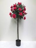55″ Rose Tree w/pot