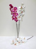 29″ Orchid Spray