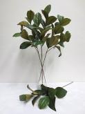 Magnolia Leaf Spray