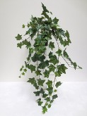 "39"" English Ivy Hanging Bush"
