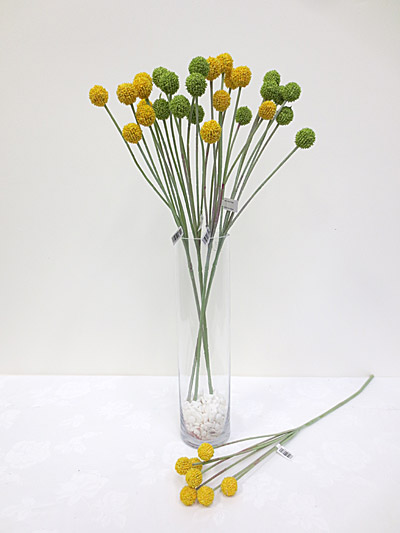 "24"" Billy Buttons Spray"