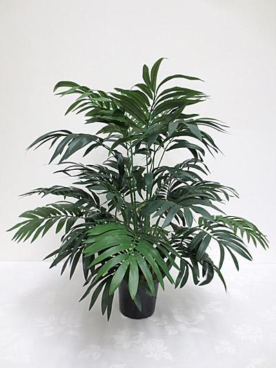 """28"""" Parlour Palm"""