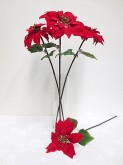Single Poinsettia Stem