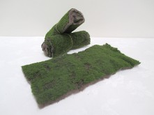 Moss Carpet (Piece)
