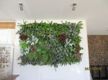 Restaurant Display – Green Wall