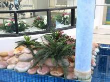 Home Pool Display – Pool
