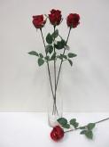 26″ Single Jessica Rose