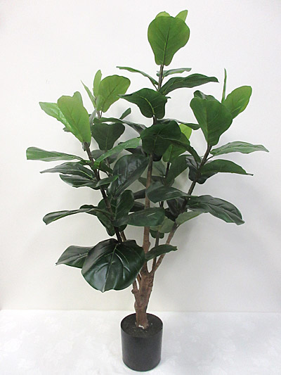4′ Potted Fiddle Leaf Tree