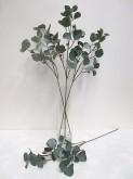 32″ Broad-leaf Eucalyptus Spray