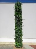 Slim Vertical Green Wall
