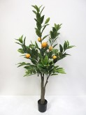 4′ Potted Lemon Tree