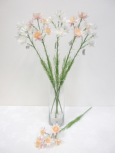 Helichrysum Spray (Blushing Bride)