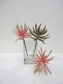 9.5″ Aloe Pick