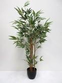 3′ Potted Mini Bamboo Tree