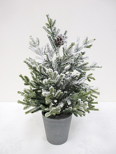 "15"" Potted Snow Pencil Pine Tree"