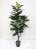 4′ Potted Fiddle Leaf Tree