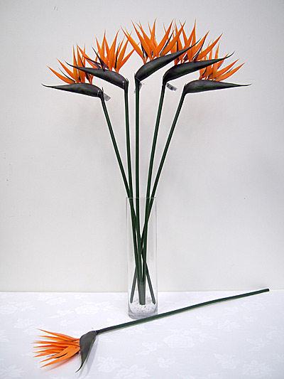36″ Single Bird of Paradise