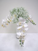 Orchid & Baby's Breath Bouquet