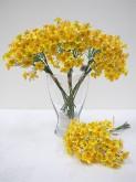 30cm Waxflower Bouquet (Yellow)