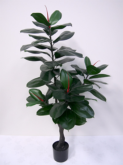 4′ Potted Rubber Plant