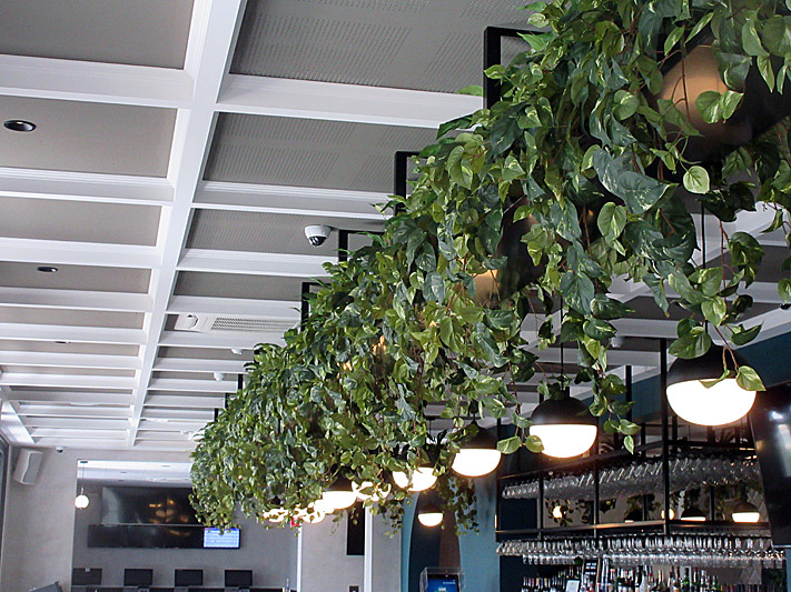 Bars, Cafes and Restaurants